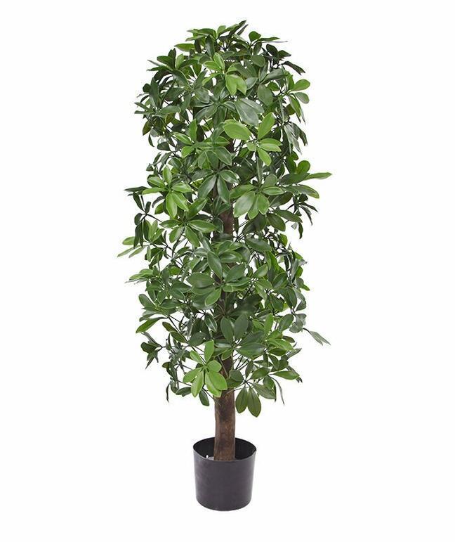 Sztuczna roślina Shefler 120 cm