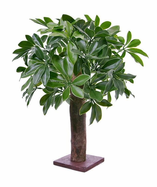 Sztuczna roślina Shefler 50 cm