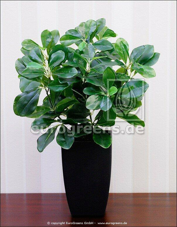 Sztuczna roślina Śliwka 40 cm