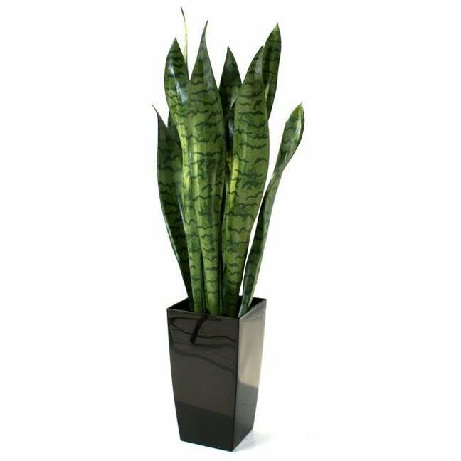 Sztuczna roślina Svokrine języki 70 cm