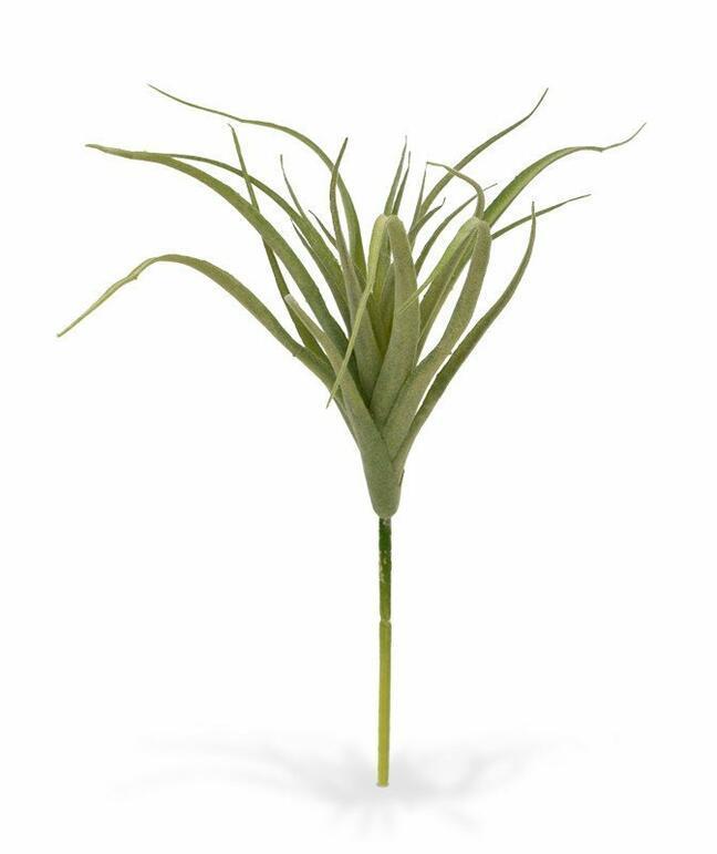 Sztuczna roślina Tilandsia 20 cm