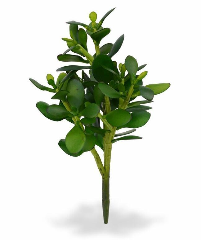 Sztuczna roślina Tučnolist 30 cm