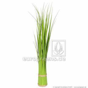 Sztuczna wiązka trawy Trzcina pospolita 45 cm