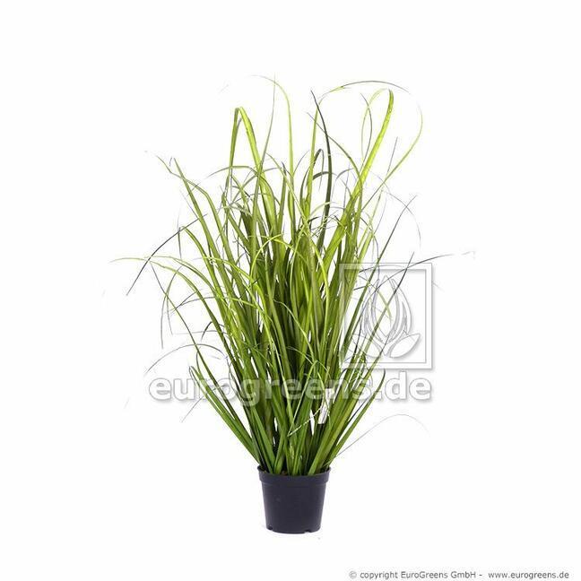 Sztuczna wiązka trawy Trzcina pospolita w doniczce 60 cm
