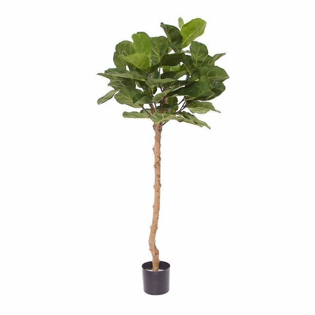 Sztuczne drzewo Drzewo figowe 120 cm