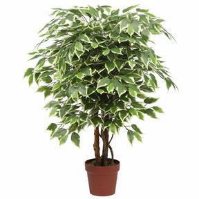 Sztuczne drzewo Figowiec 110 cm