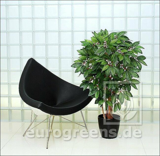 Sztuczne drzewo Kawowiec 130 cm
