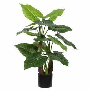 Sztuczne drzewo Taro Araceae 80 cm