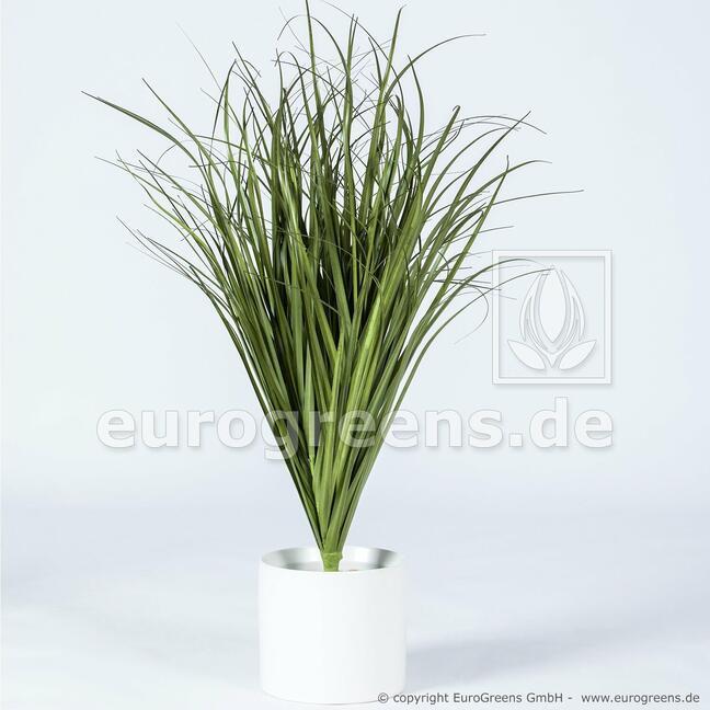 Sztuczne żłobienie wiązki trawy Trzcina pospolita 80 cm