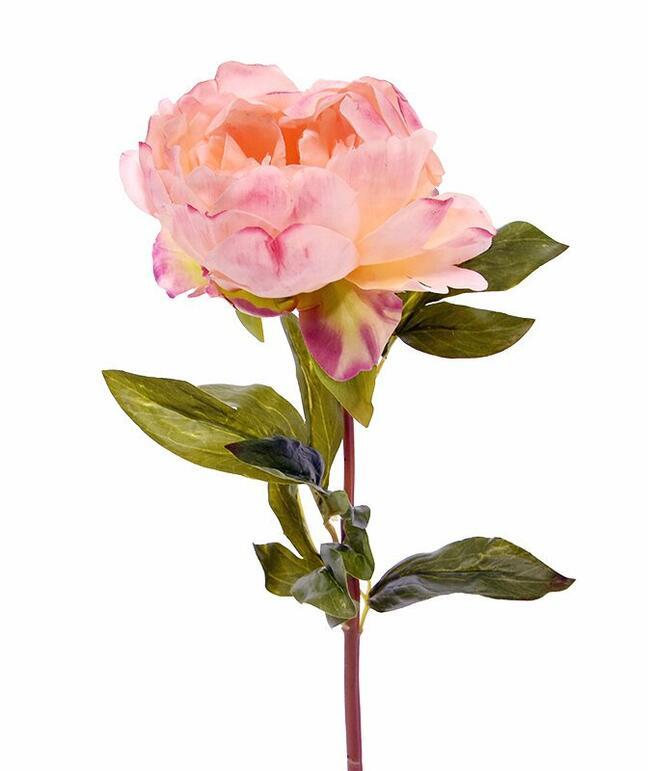 Sztuczny kwiat Piwonia róż 55 cm