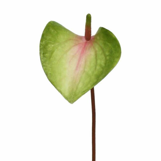 Sztuczny liść Anturium różowo-zielony 50 cm