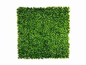 Sztuczny panel liścia Peperomia - 50x50 cm