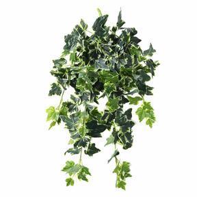 Sztuczny wąs Bluszcz biało-zielony 80 cm