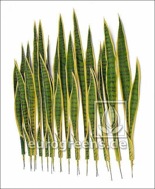 Zestaw sztucznych liści Języki Svokrine 85 cm